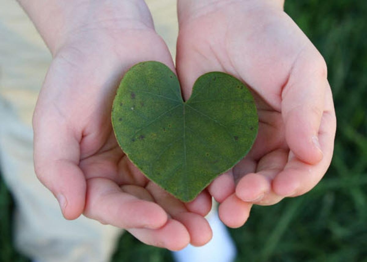 Sự yêu thương, quan tâm, giúp đỡ đúng thời điểm là món quà giá trị nhất với người nhận (Ảnh minh họa internet)