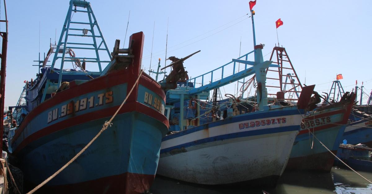 Kiểm soát ngay tại cảng là một trong những việc làm của cơ quan chức năng nhằm hạn chế vi phạm.