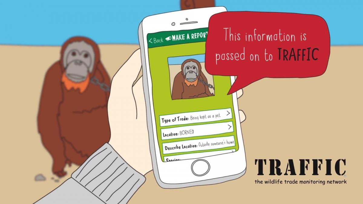 Du khách được khuyến khích sử dụng app Wildlife Witness để báo cáo hành vi xâm hại động vật. Nguồn: Chester Zoo