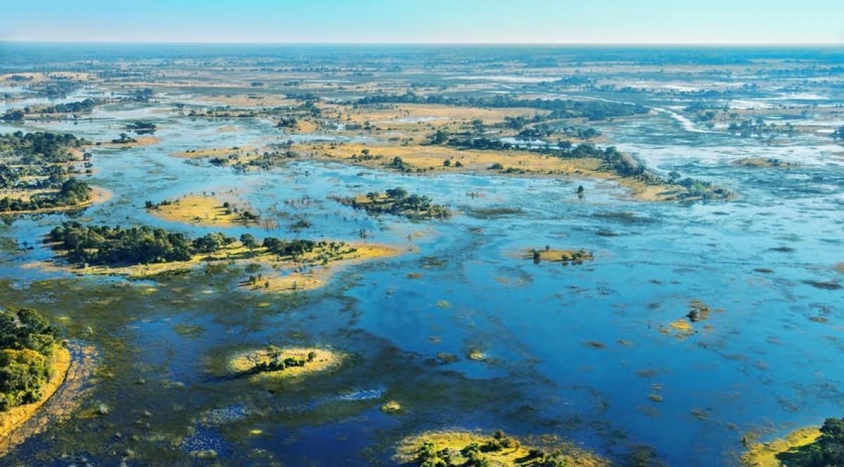 Đồng bằng sông Okavango