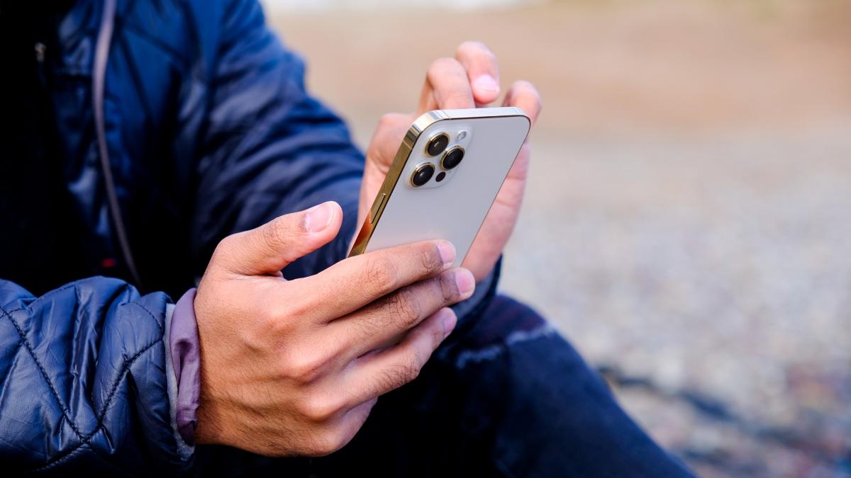 Tại thị trường Việt Nam, phiên bản mã VN/A phân phối chính hãng của iPhone 12 Pro Max được bán với giá khởi điểm dự kiến là 33,99 triệu đồng cho mẫu 128 GB, trong khi cao nhất là 43,99 triệu đồng cho mẫu 512 GB.