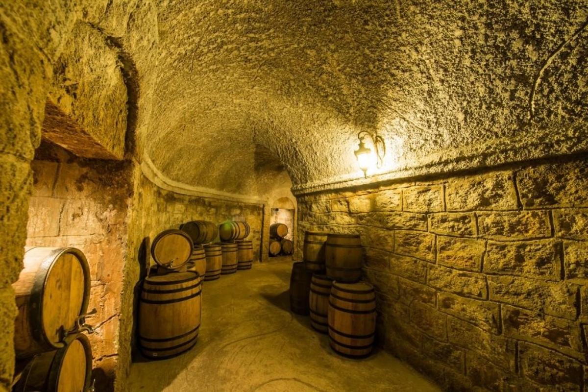 Hầm rượu Debay là một hầm rượu cổ 100 năm tuổi tại Bà Nà Hills. Đây không chỉ là một điểm thăm quan thú vị mà còn là nơi khá hay ho để tìm hiểu về lịch sử, cảm nhận màu tháng năm phủ lên không gian thật nghệ thuật và thưởng thức những loại rượu vang tuyệt vời.
