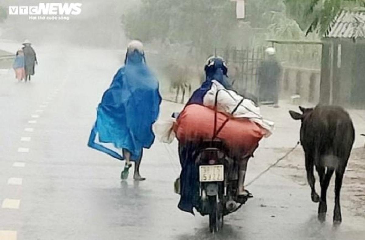 Tại huyện Cẩm Xuyên (Hà Tĩnh), chính quyền phát lệnh khẩn cấp di dời dân ra khỏi các vùng có nguy cơ lũ quét và sạt lở đất. Trong đó, xã Cẩm Quang xảy ra 4 điểm sạt lở đất, để đảm bảo an toàn, huyện đã khẩn cấp sơ tán 108 hộ dân với 337 khẩu nằm sát với khu vực sạt lở đến nơi an toàn. Xã Cẩm Lĩnh cũng xảy ra sạt lở đất ở nhiều điểm, 33 hộ dân đã được sơ tán.