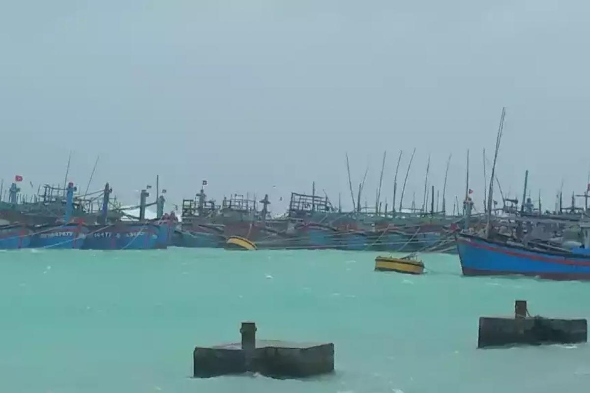 Các tàu cá vào tránh trú an toàn tại âu tàu Song Tử Tây. Ảnh: Vùng 4 Hải quân cung cấp