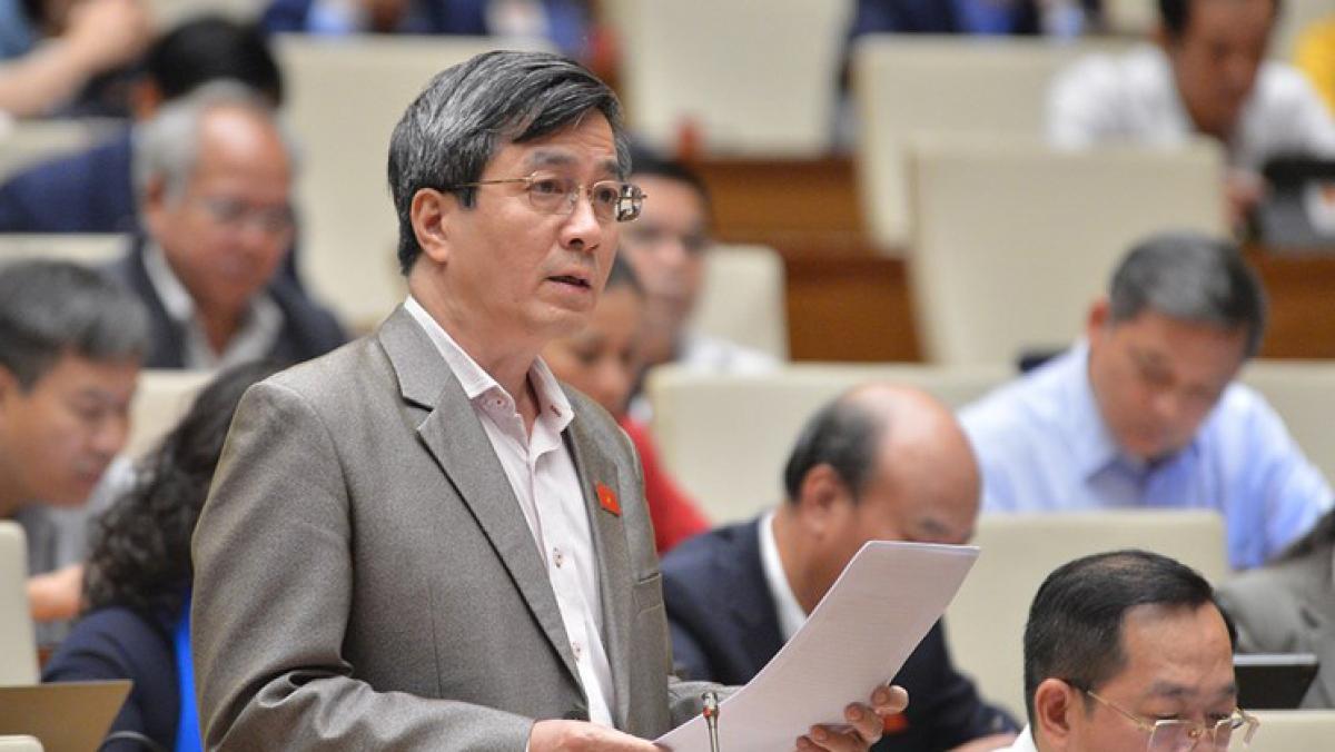 Đại biểu Quốc hội Bùi Thanh Tùng.