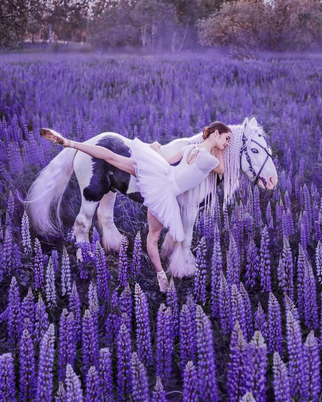 Giữa cánh đồng hoa oải hương ở nước Nga.