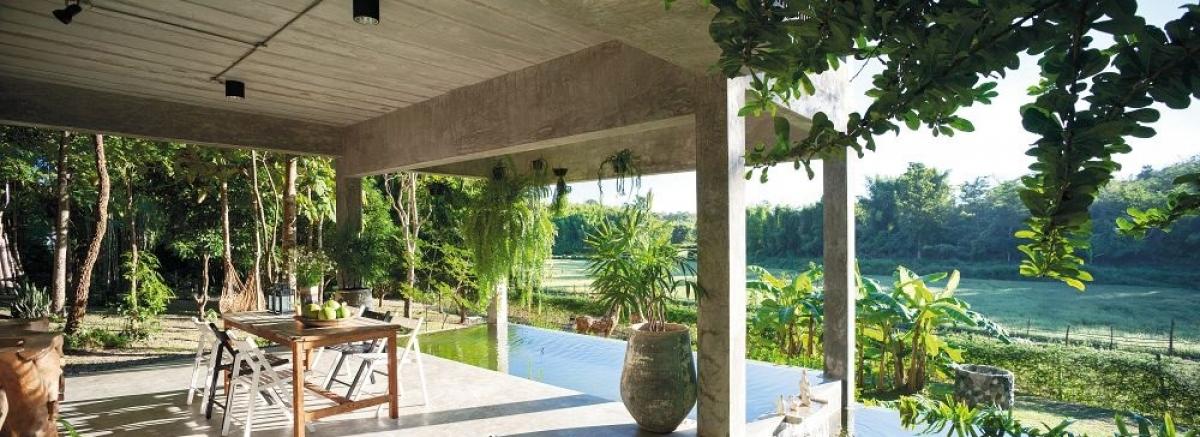 Sự mộc mạc của trần xi măng tạo sự hòa hợp giữa ngôi nhà và thiên nhiên./.
