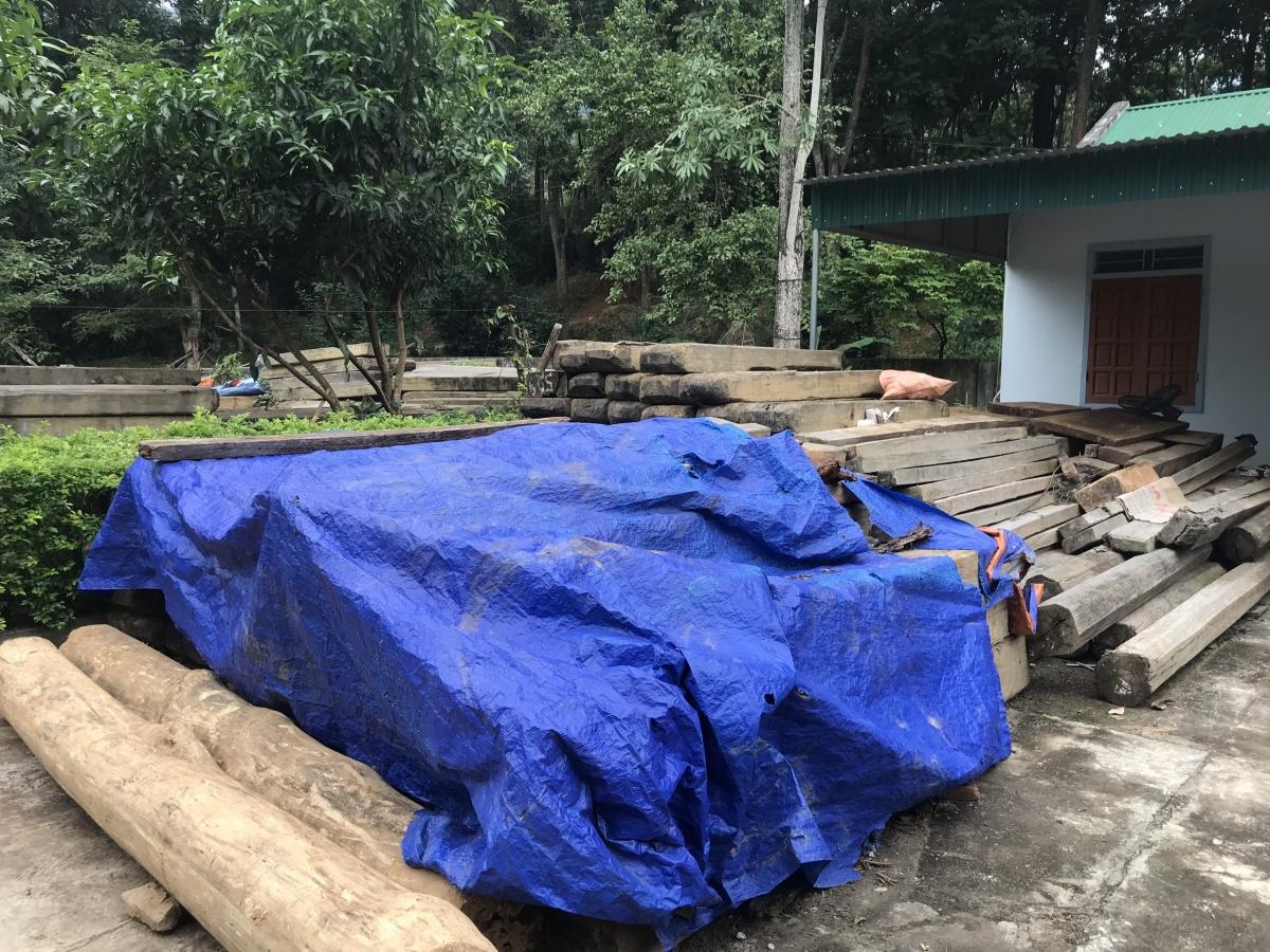 Đây là tang vật trong những vụ phá rừng xảy ra trên địa bàn huyện Kỳ Sơn.