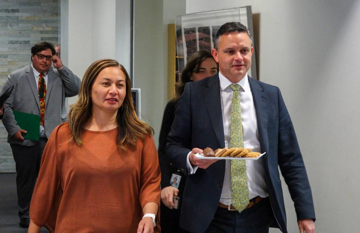 Bà Marama Davidson và ông James Shaw, hai đồng lãnh đạo đảng Xanh sẽ tham gia chính phủ mới của New Zealand (Ảnh Mark Mitchell).
