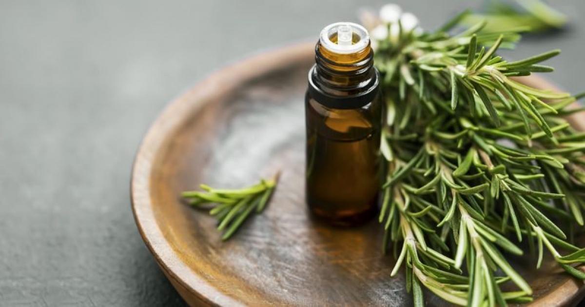 Hương thảo: Hương thảo có tính kháng sinh và kháng khuẩn rất mạnh, thậm chí tính kháng sinh của tinh dầu hương thảo còn vượt qua một số loại thuốc. Tính kháng sinh của tinh dầu hương thảo được xem là mạnh hơn hầu hết các loại tinh dầu thảo dược khác.