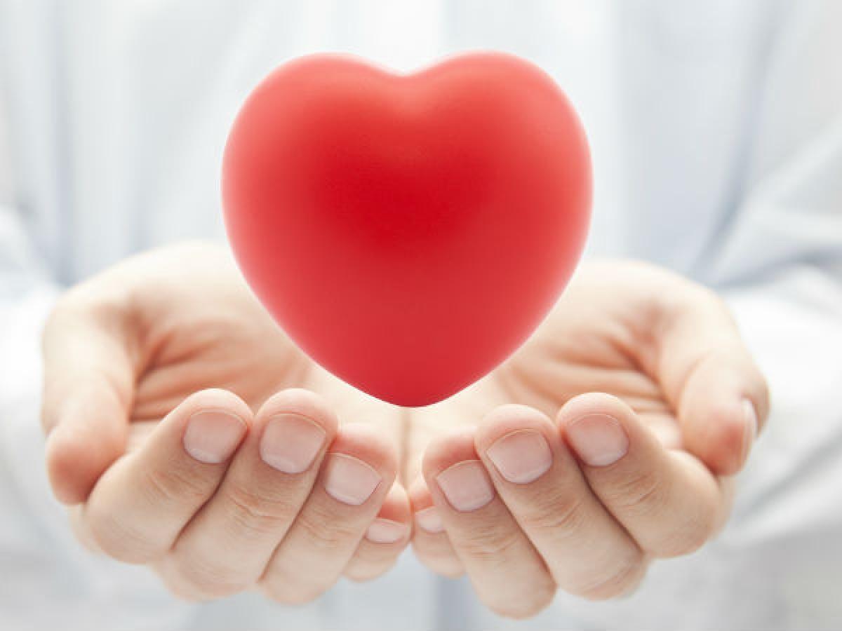 Nâng cao sức khỏe tim mạch: Nghiên cứu đã chỉ ra rằng các axit béo không bão hòa đa có thể giúp giảm nguy cơ mắc các bệnh tim mạch. Ăn cá thu giúp tăng hàm lượng cholesterol HDL tốt cho sức khỏe và giảm hàm lượng cholesterol LDL.