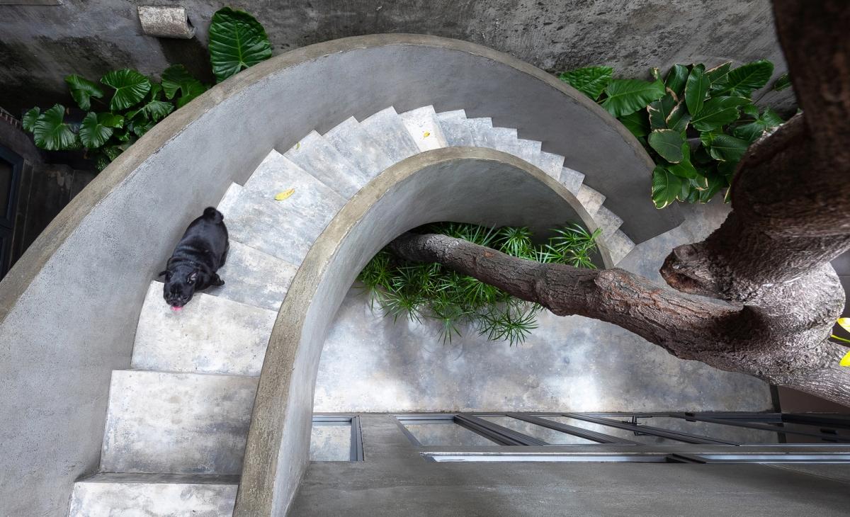 Cầu thang xoắn ốc ôm lấy khoảng sân nhỏ trước nhà./.