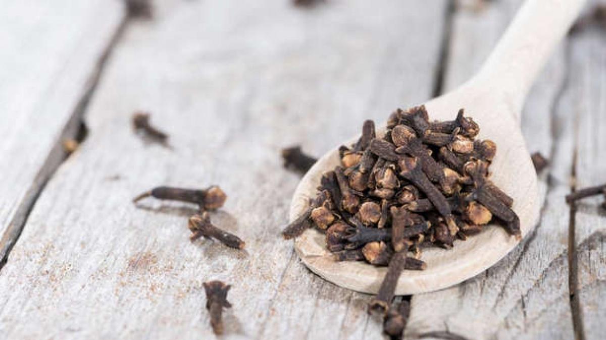 Đinh hương: Đinh hương cũng là một loại thảo mộc có mùi hương nồng và ngọt giống như quế. Khi nhai, đinh hương còn tạo cảm giác tê lưỡi, mà điều này chứng tỏ các thành phần làm thơm miệng mạnh mẽ của đinh hương đang phát huy tác dụng.