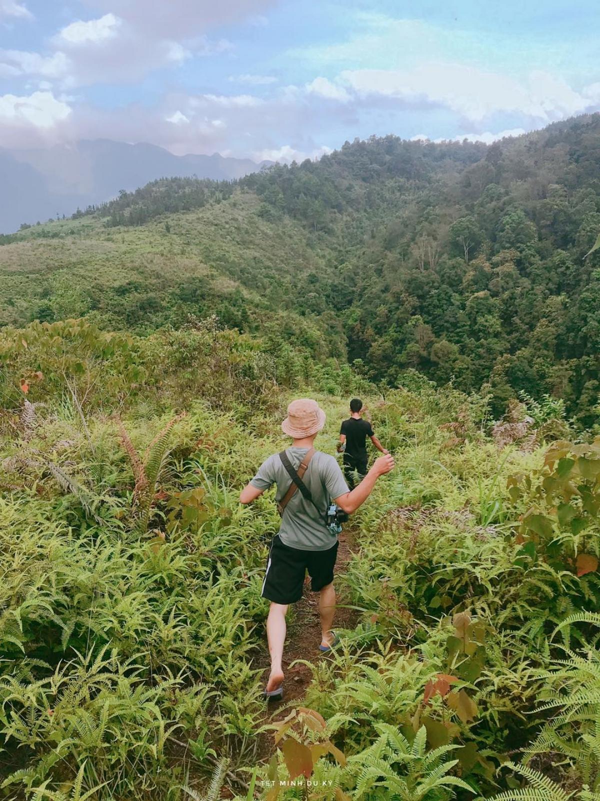 Con đường rừng dẫn đến thác Nai