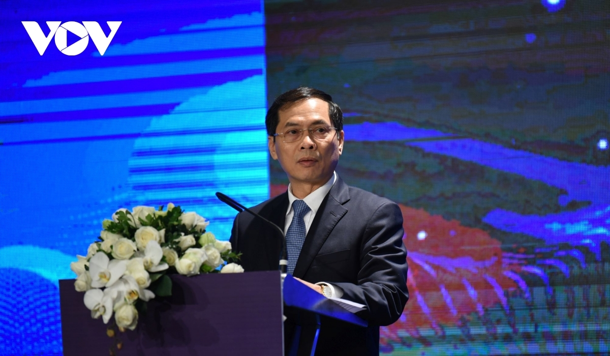 Deputy Foreign Minister Bui Thanh Son speaks at the conference