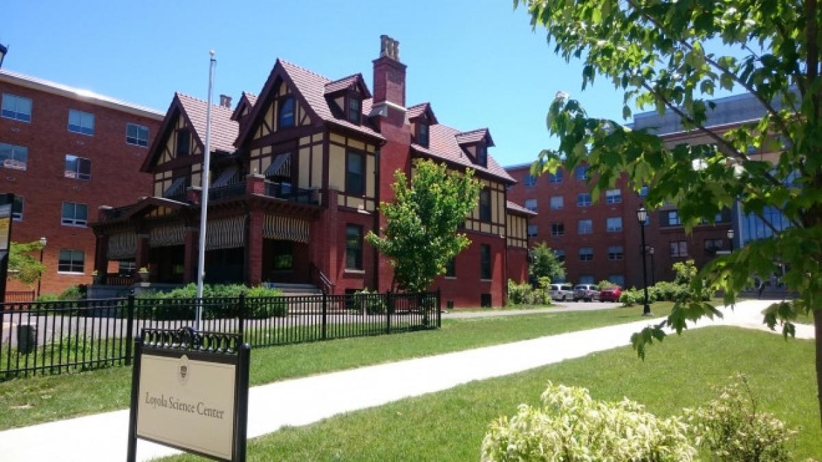 Caitlin House từng là nơi ở của doanh nhân George H. Caitlin, được xây dựng vào năm 1912. Ngôi nhà có 16 phòng, với đồ đạc và phong cách trang trí vẫn được bảo tồn nguyên vẹn. Kiến trúc gỗ và các cửa sổ kính màu là điểm nhấn chính của ngôi nhà. Đây cũng là nơi Hiệp hội Lịch sử Lackawanna thường nhóm họp, với một thư viện và phòng giảng dạy.