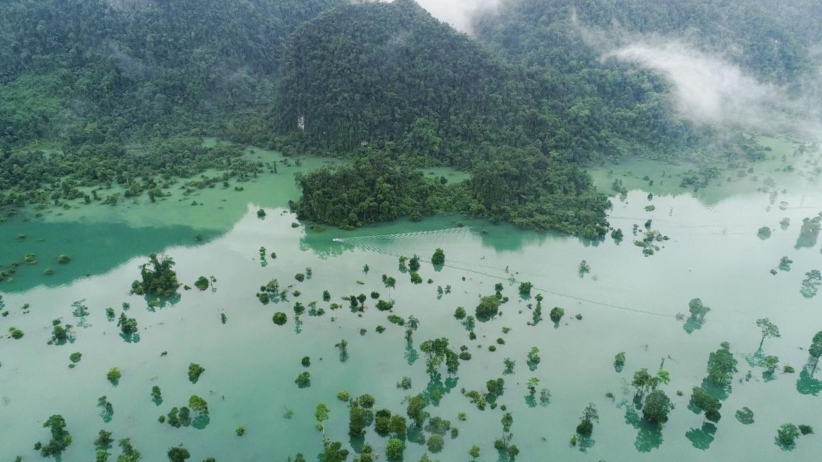 Nước lũ trong vắt, xanh màu ngọc, tạo thành một hồ rộng lớn nhấn chìm những cây cổ thụ trong khoảng một tháng.