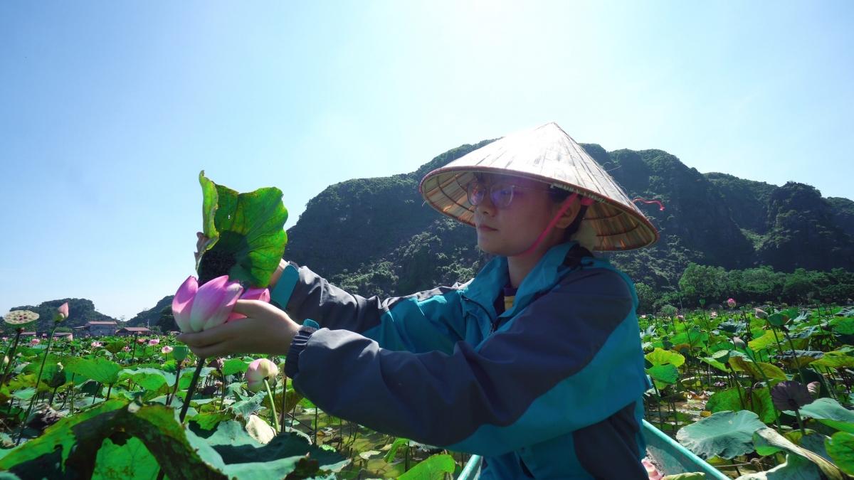 Không ít bạn trẻ ngỡ ngàng khi dù đã vào giữa tháng 10 nhưng đầm sen Hang Múa, đầm sen lạ nhất Việt Nam vẫn rất nhiều hoa.