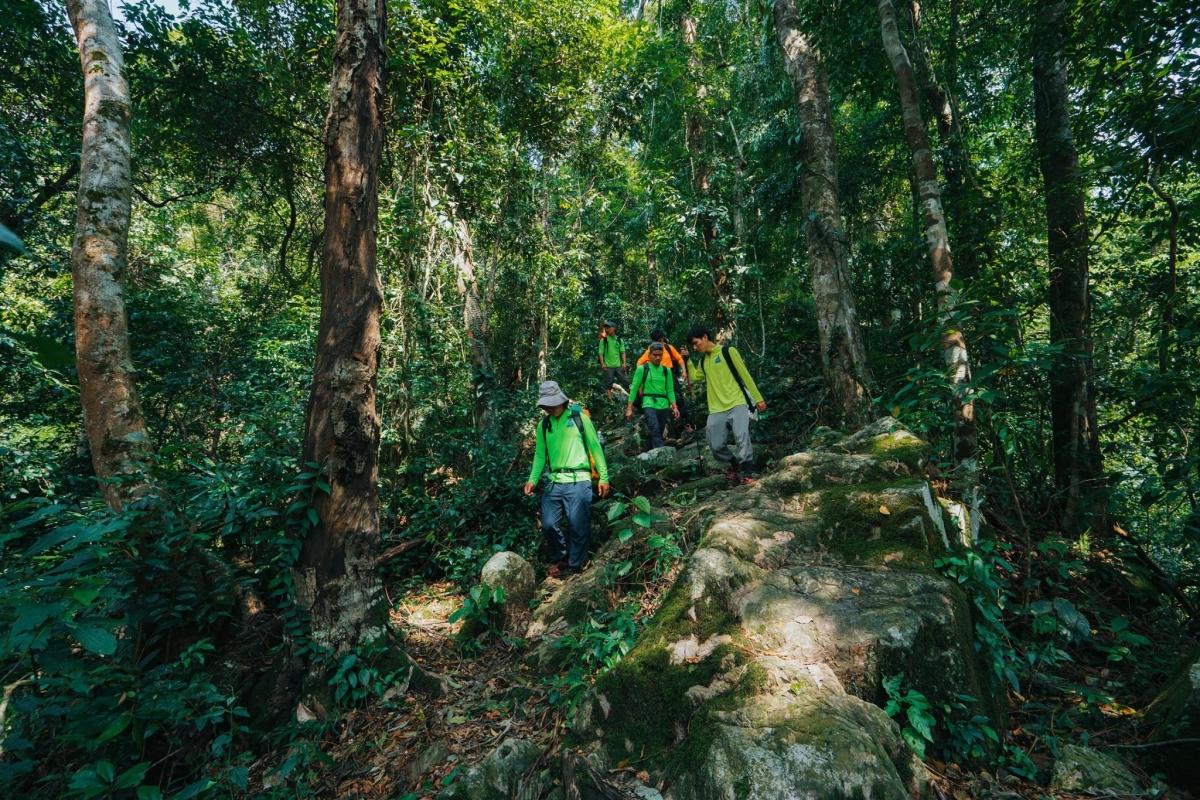 Khởi đầu hành trình khám phá Sơn Đoòng bằng việc đi bộ qua những cánh rừng. Nguồn:Oxalis Adventures