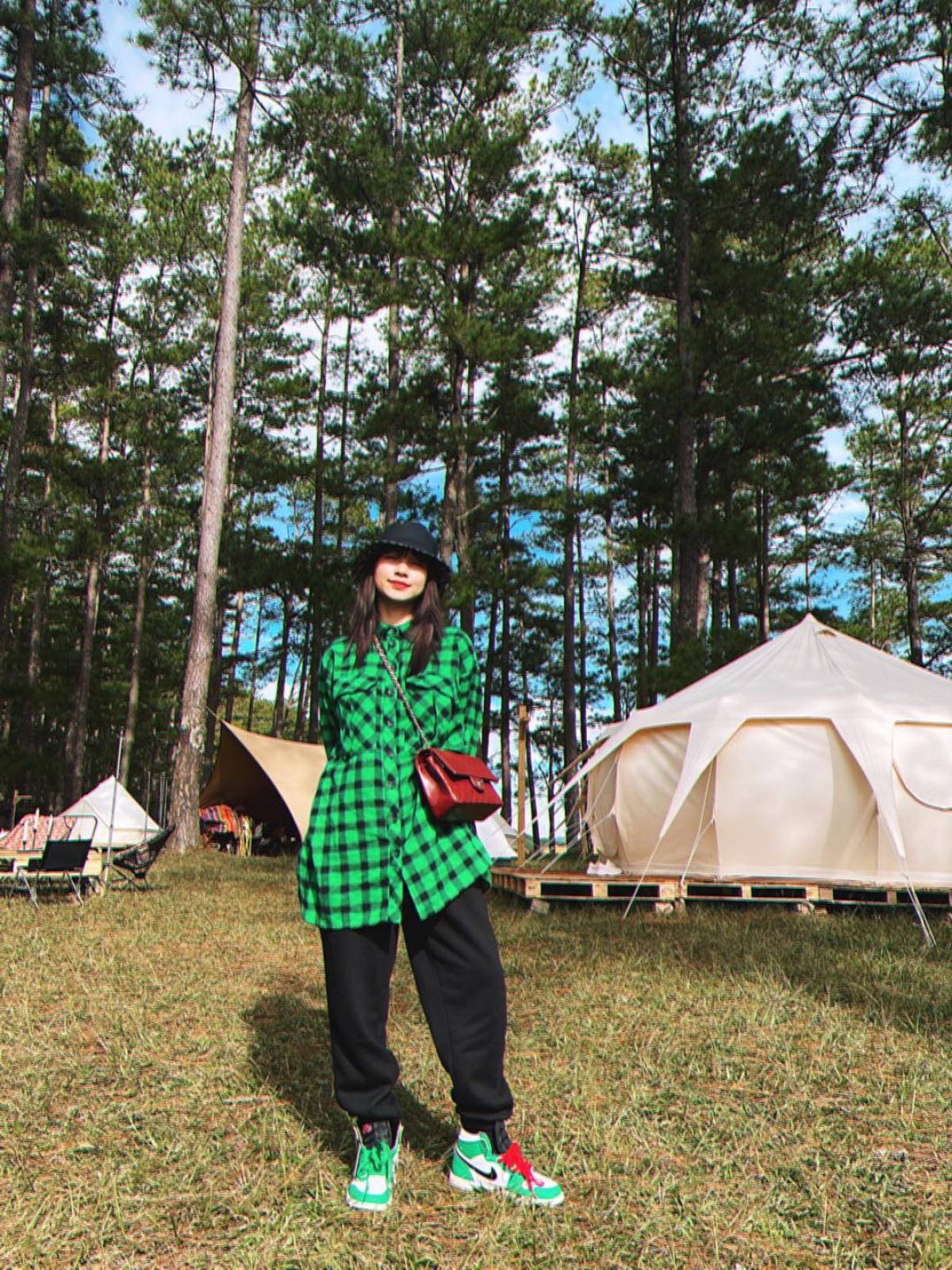 Hoà Minzy trêu đùa các fan rằng cô đang có cả một rừng thông, sẵn sàng mang về để mọi người chơi Noel.