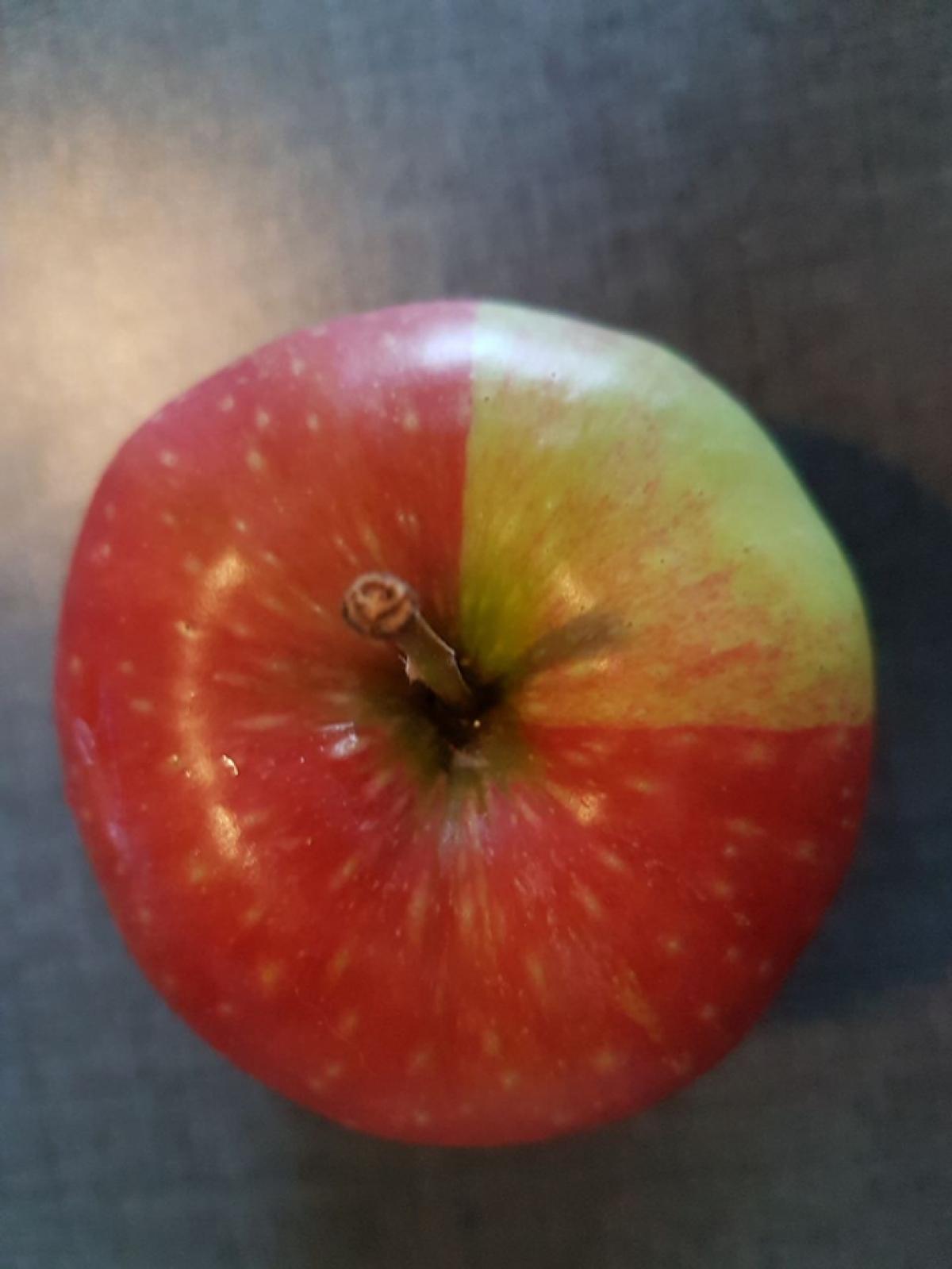 Trái táo chín 3/4.