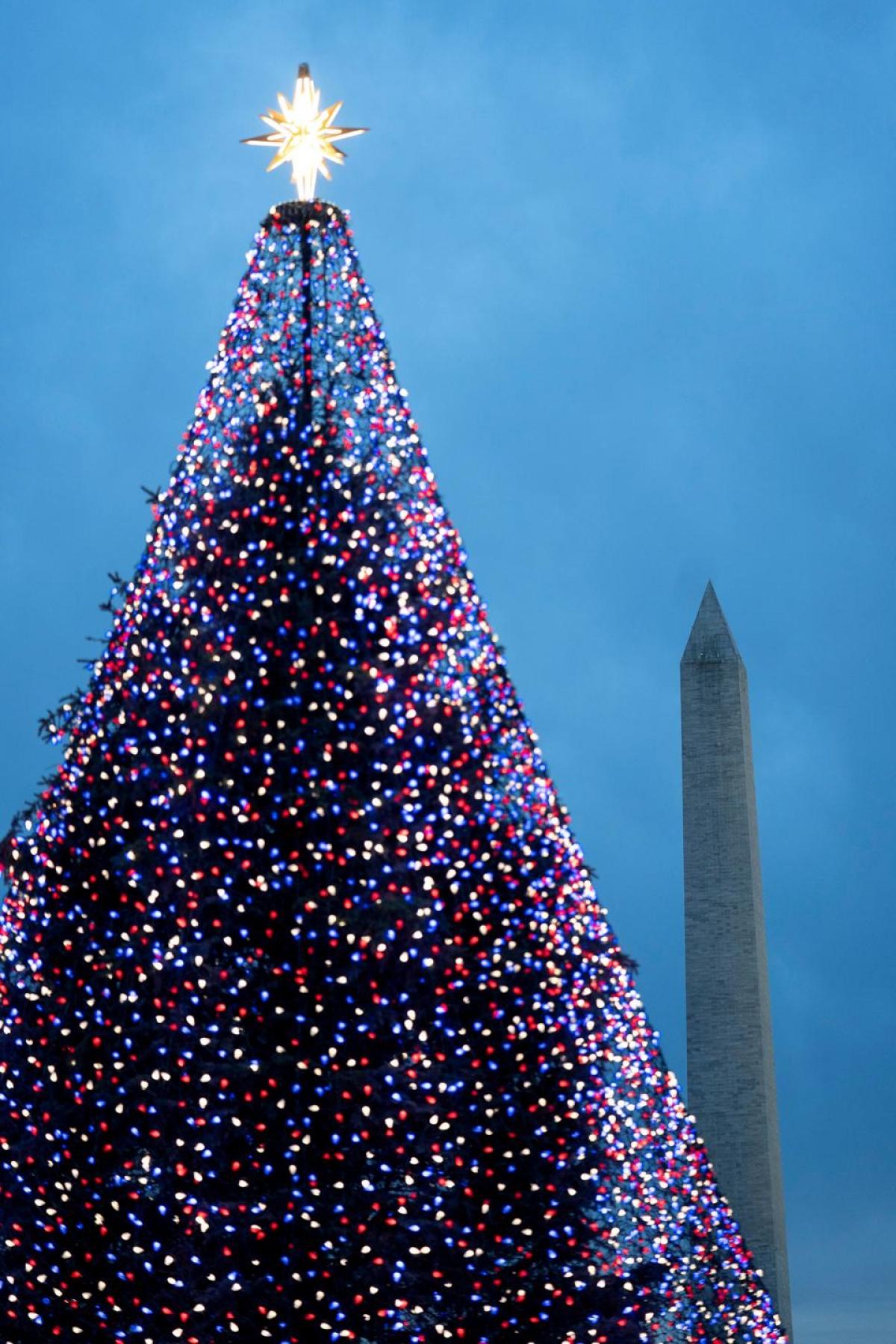 Cây thông Noel với hàng nghìn ánh đèn màu lấp lánh gần Nhà Trắng ở thủ đô Washington.
