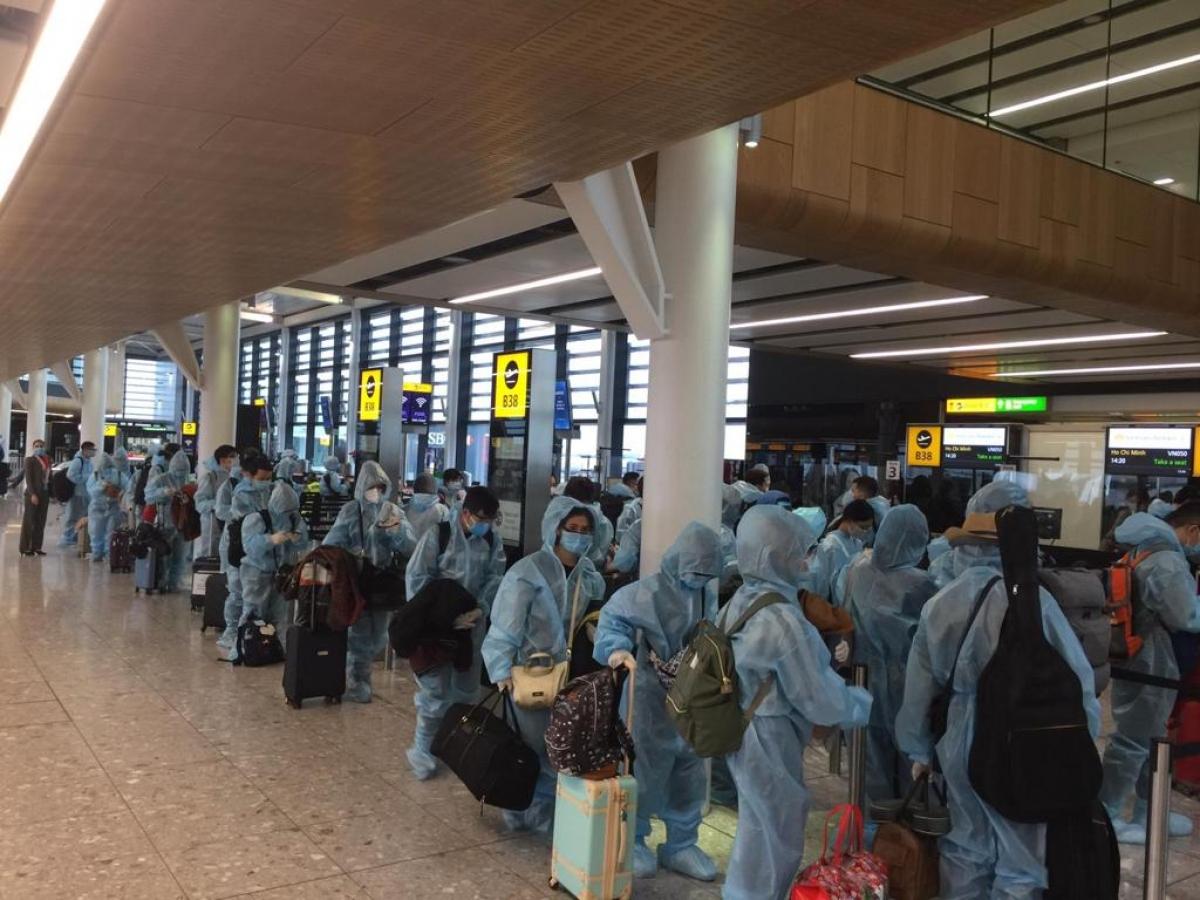 Đưa hơn 300 công dân Việt Nam từ Anh về nước.
