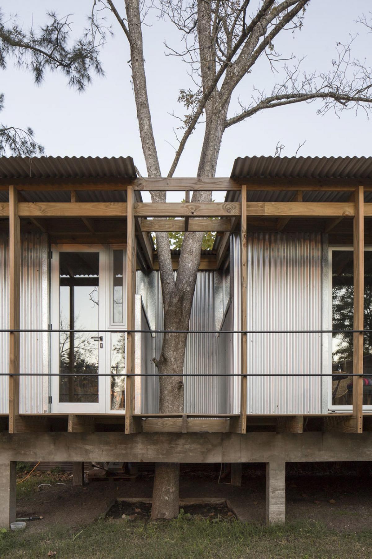Tối ưu hóa diện tích đất và cây xanh, đây chính là lý do khiến cây xanh được len lỏi vào chính cấu trúc căn nhà.