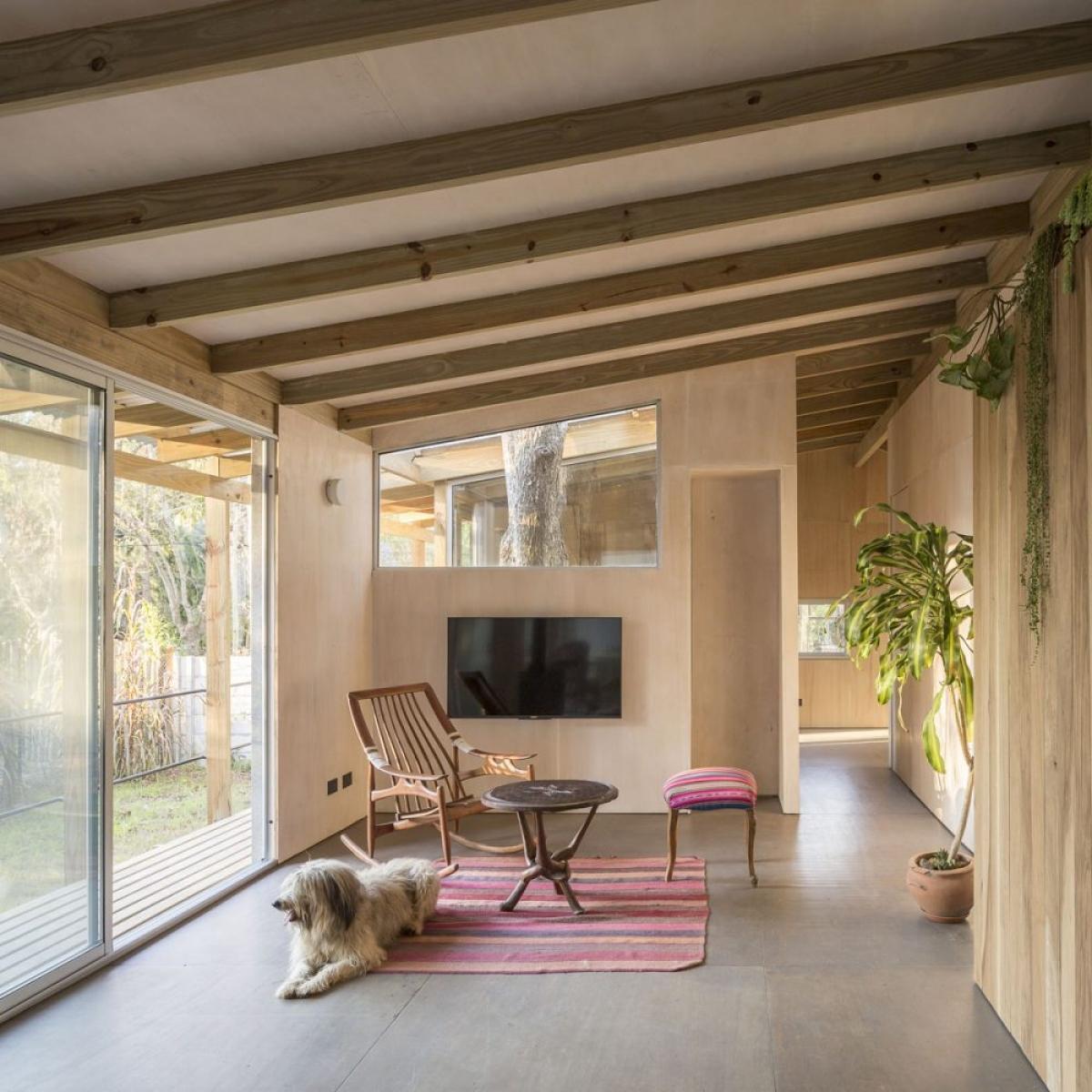 Phòng khách tối giản, nhẹ nhàng cùng chiếc thảm màu sắc tươi trẻ.
