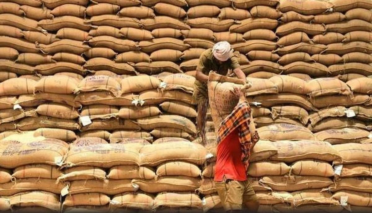 Hiện Ấn Độ là nhà sản xuất gạo số một thế giới. Ảnh: The Hindu