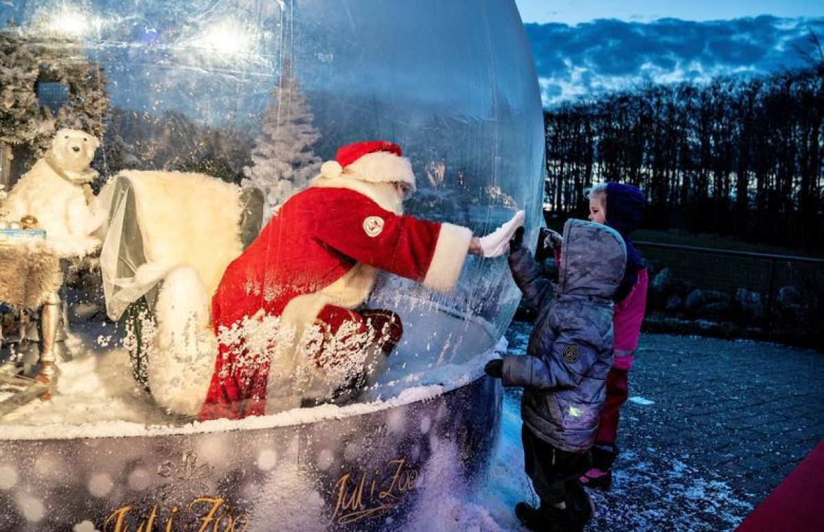 """Một người hóa trang thành ông già Noel, ngồi bên trong """"bong bóng"""" tại Vườn thú Aalborg (Đan Mạch) và giao lưu với trẻ em qua lớp kính. Ảnh: Reuters"""