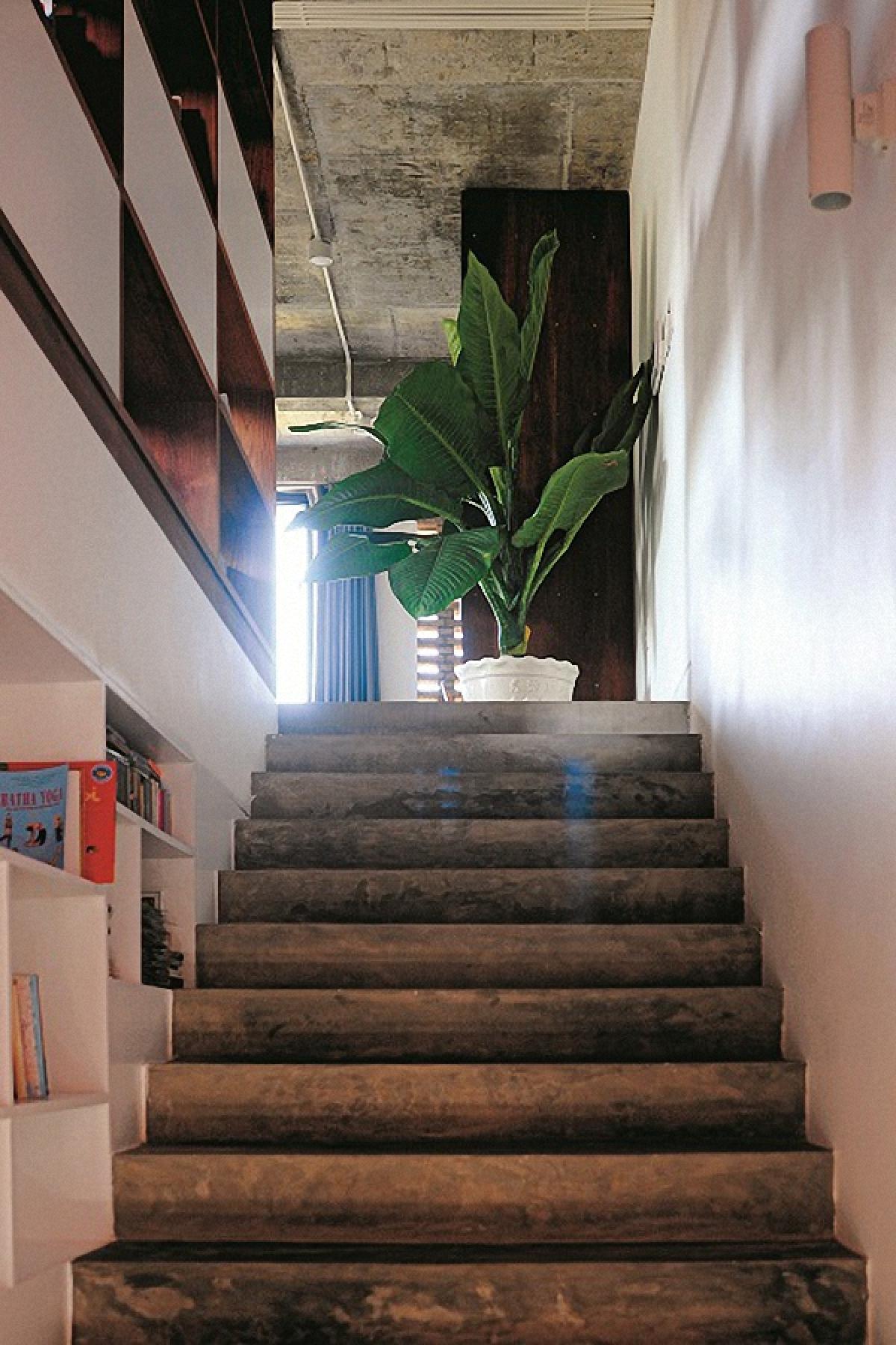 Các bậc thang cũng được để bề mặt bê tông trần cùng phong cách chung của ngôi nhà.