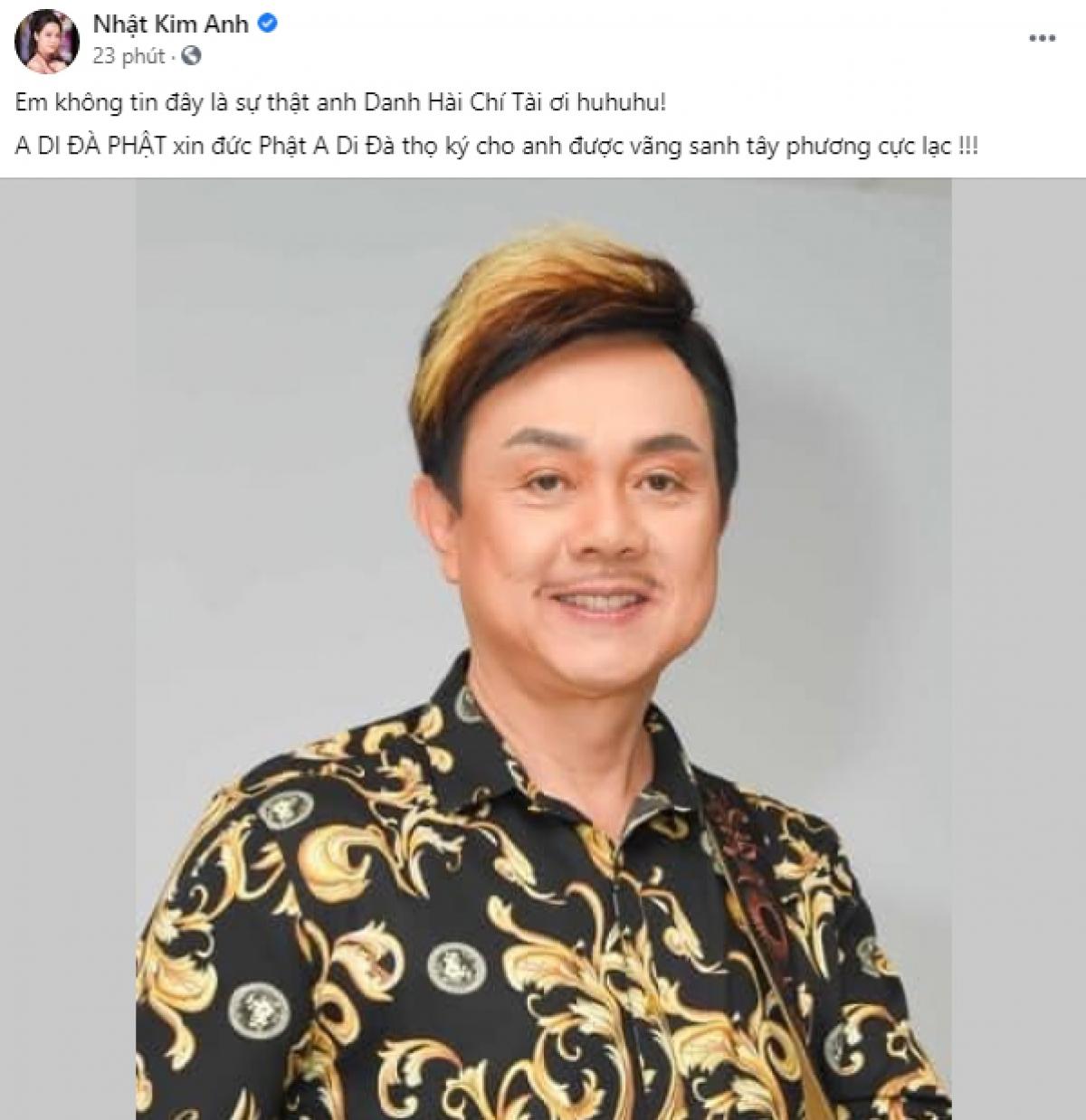Diễn viên - ca sĩ Nhật Kim Anh.