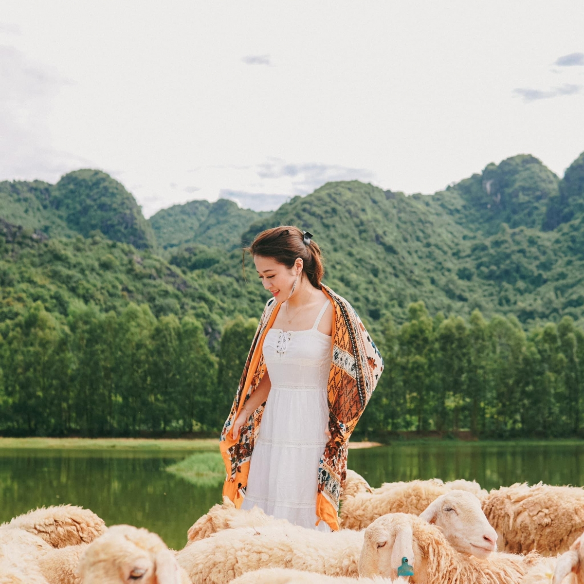 Emerging in the past year, along with Hang Dance, Gia Hung Ninh Binh sheep field is the hottest check-in point in Gia Vien district.  The vast sheep fields are quietly lying on the dike slopes, promising to bring you many beautiful virtual live photos.