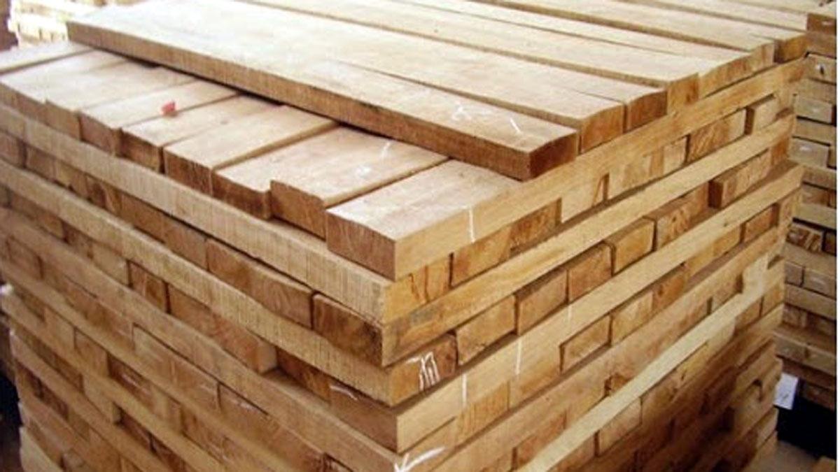 Gỗ từ cây cao su, một hướng phát triển mới về nguyên liệu cho ngành gỗ. Ảnh minh họa: KT