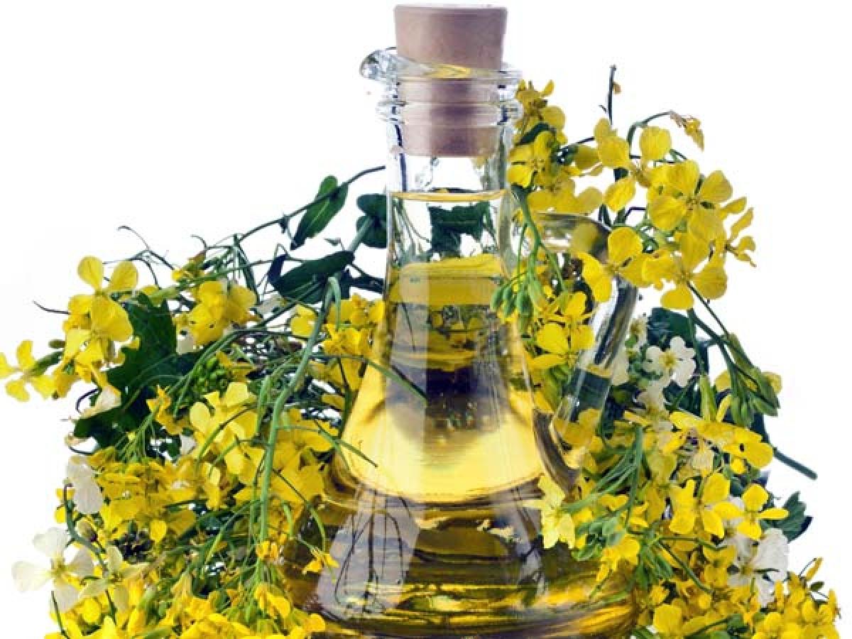 Hoa anh thảo: Hoa anh thảo có tác dụng điều trị viêm da cơ địa, các triệu chứng tiền kinh nguyệt và viêm khớp dạng thấp. Loại hoa này còn có tác dụng chống đông máu, từ đó giảm nguy cơ mắc các bệnh tim mạch.