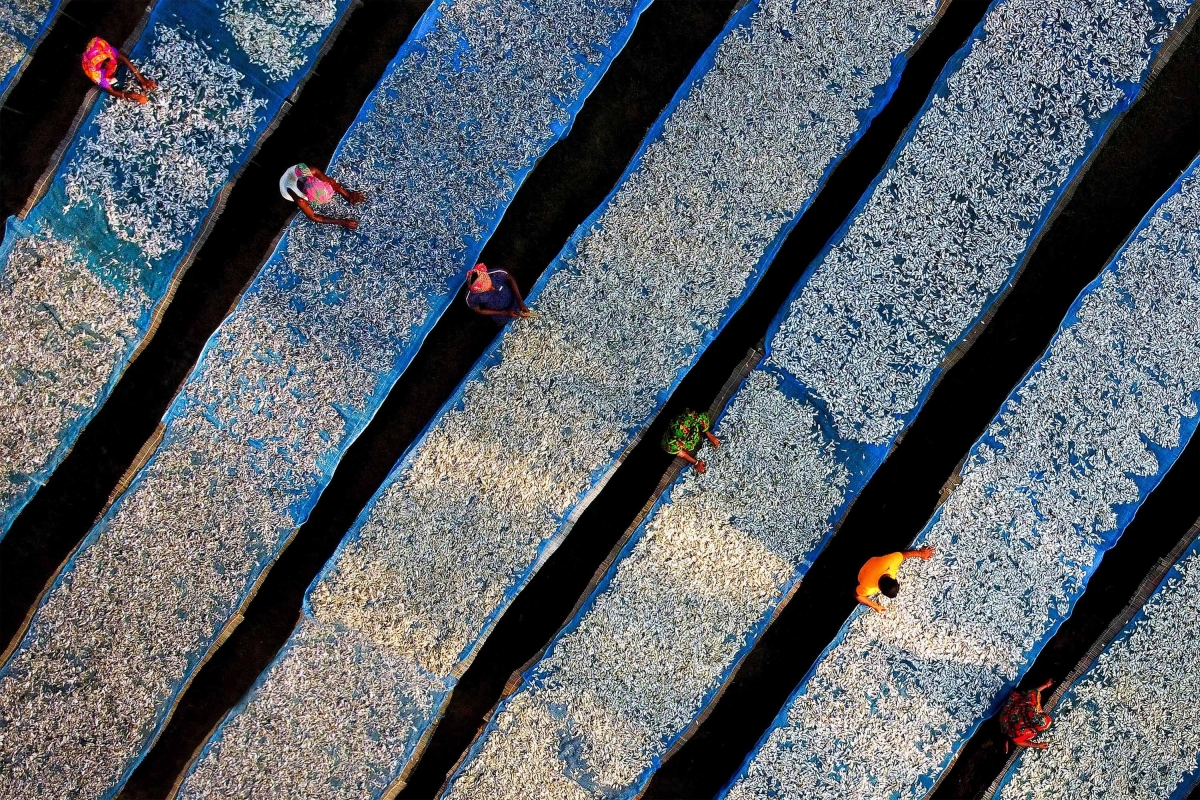 Bangladeshi photographer Ashraful Islam Shimul wins second runner-up spot in the Drone and Aerial category.