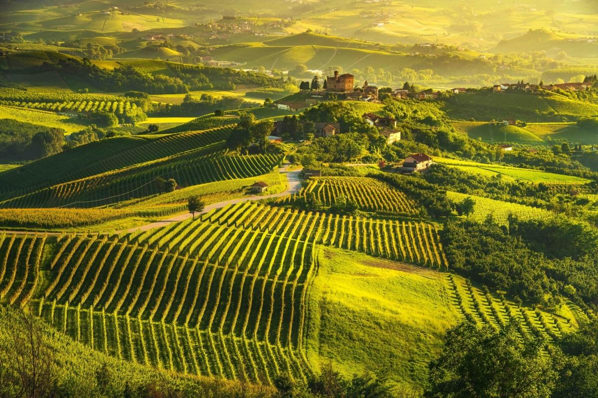 Khung cảnh ở Piedmont, Italy. Nguồn: Shutterstock