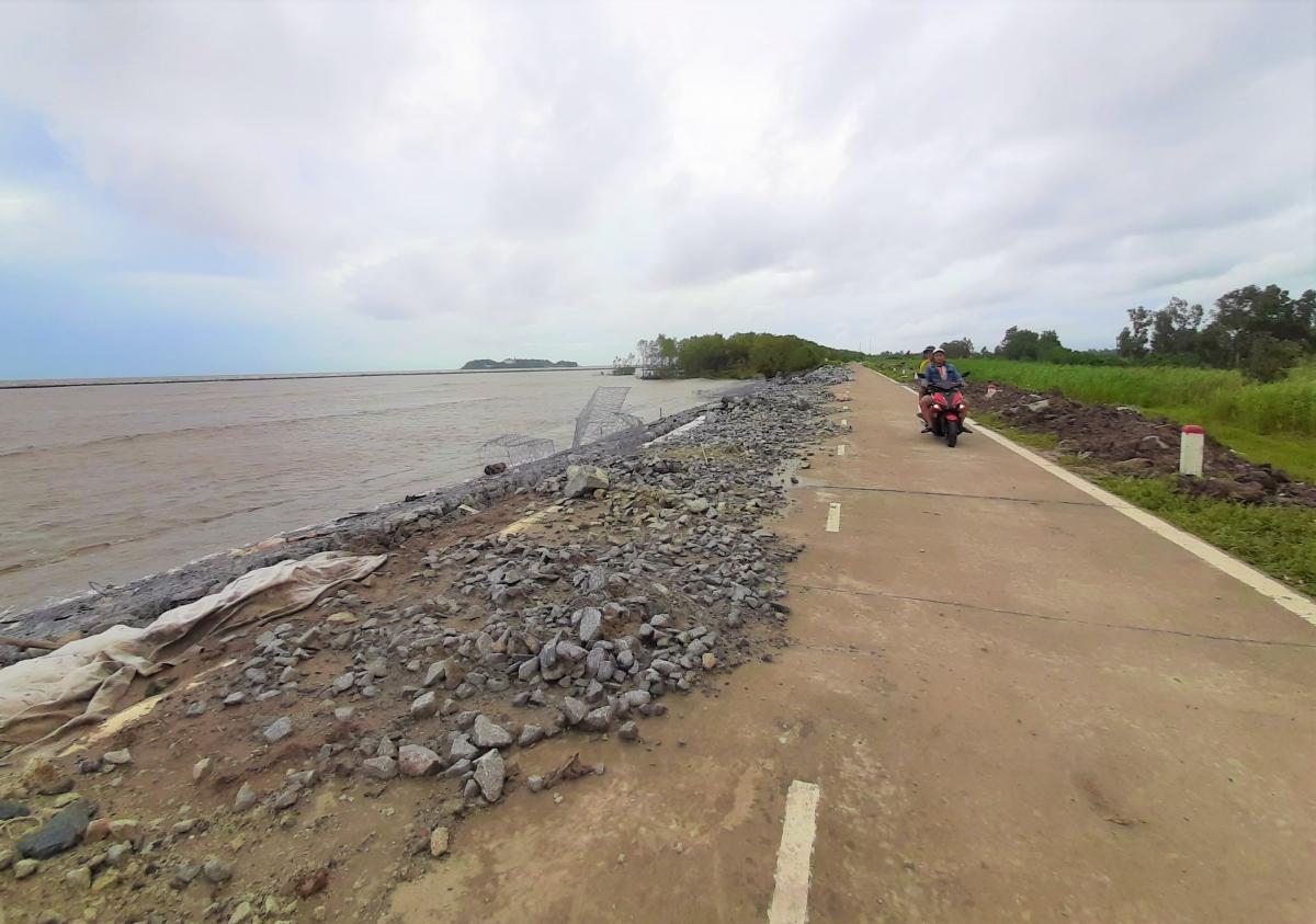Thời tiết ngày càng cực đoan, đê biển Tây của tỉnh Cà Mau ngày càng bị tàn phá nhiều hơn.