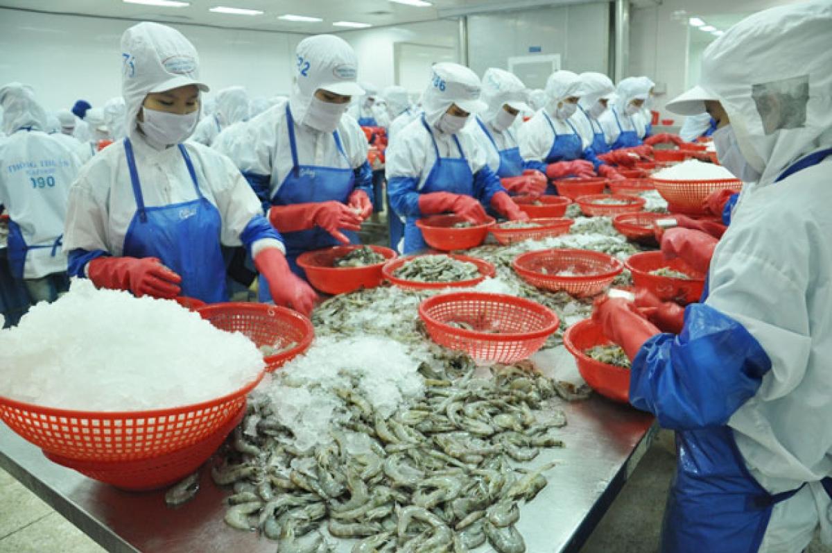 Sản phẩm thủy sản của Công ty Thông Thuận