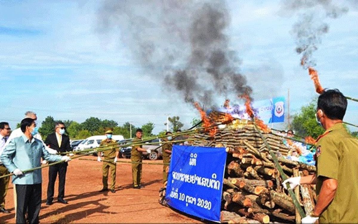 Cơ quan chức năng Lào tổ chức thiêu hủy ma túy thu được từ các vụ án.