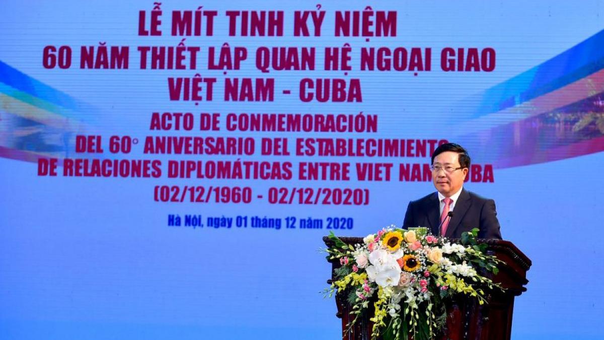 Phó Thủ tướng, Bộ trưởng Ngoại giao Phạm Bình Minh phát biểu tại buổi lễ (Ảnh: baoquocte.vn)