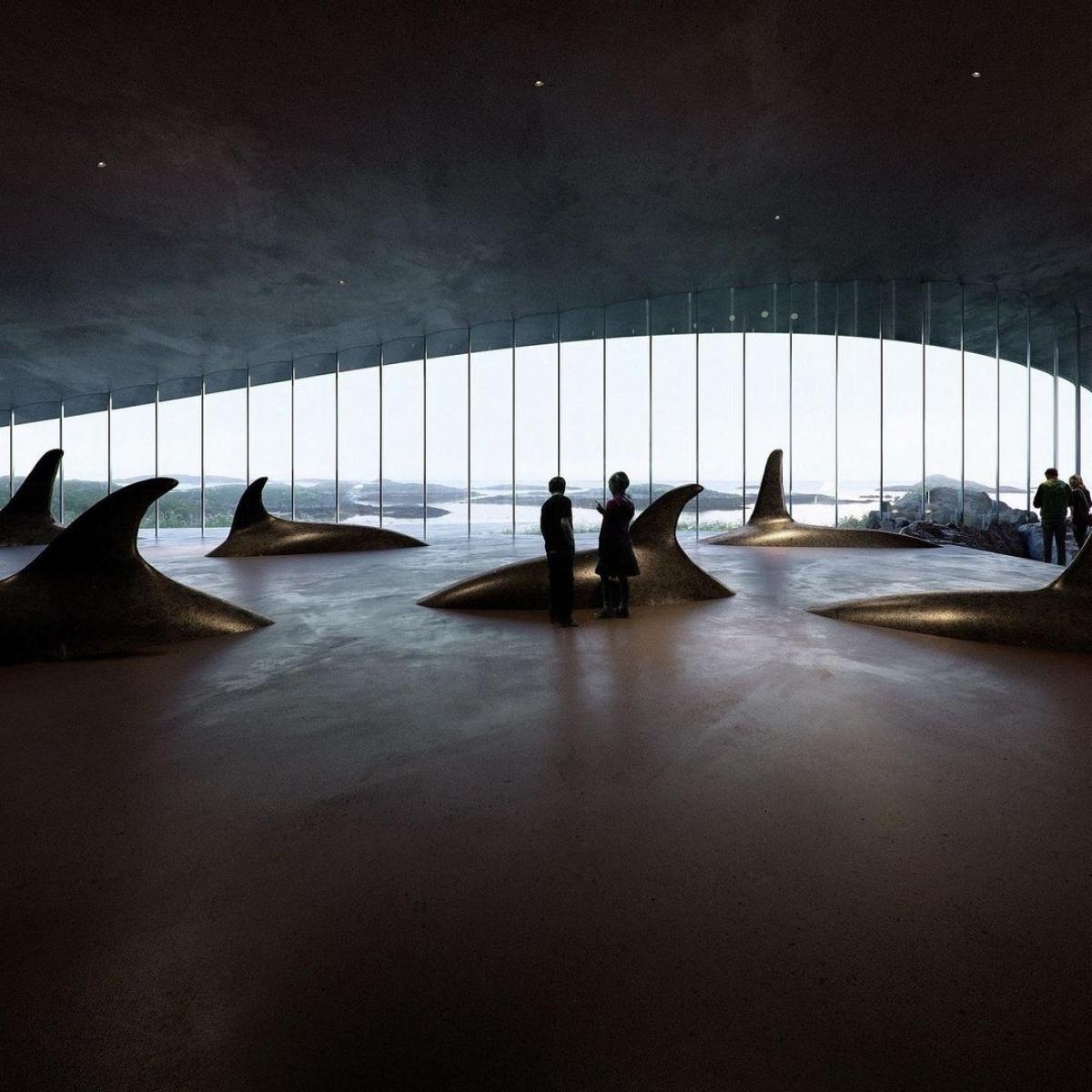 Nguồn:The Whale/Dorte Mandrup