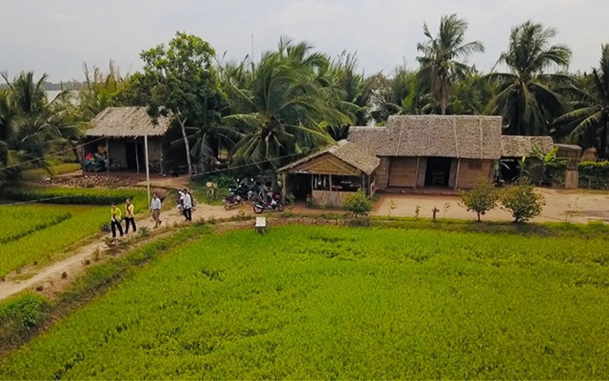 Bức tranh làng quê Nam Bộ. (Ảnh: Nhân Dân)