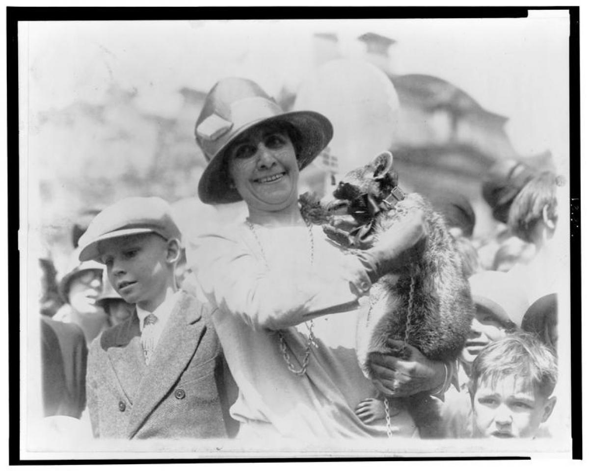 Donald Trump là tổng thống Mỹ đầu tiên trong hơn một trăm năm qua không nuôi thú cưng tại Nhà Trắng. Trước ông, chỉ có 2 tổng thống khác không nuôi thú cưng là James K Polk (1845-1849) và Andrew Johnson (1865-1869). Trong bức ảnh này (tháng 4/1927), Đệ nhất phu nhân Grace Coolidge đang ôm thú cưng gấu trúc Mỹ có tên gọi Rebecca.