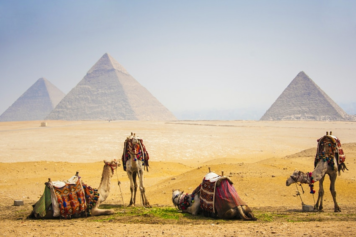 Bảo tàng đồ sộ Grand Egyptian Museum tại Cairo (Ai Cập) dự kiến mở cửa vào cuối năm 2020, tuy nhiên bị hoãn lại đến giữa năm 2021. Với kho tàng cổ vật có niên đại hàng nghìn năm, bảo tàng này là điểm đến rất đáng chờ đợi. Du khách có cơ hội chiêm ngưỡng bức tượng vua Ramses II cao 11 mét và khoảng 50,000 hiện vật quý hiếm./.