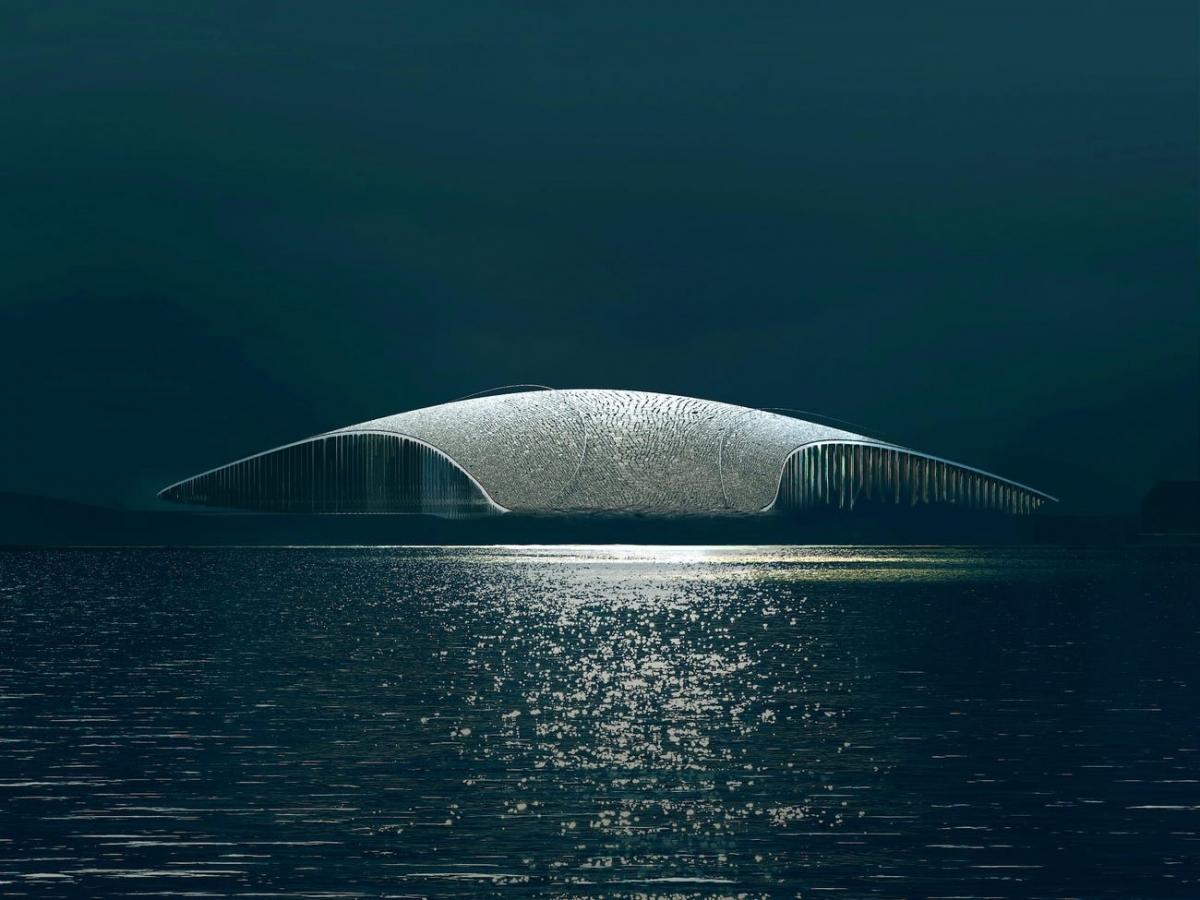 Bảo tàng The Whale có hình dáng giống chiếc đuôi cá voi. Nguồn:The Whale/Dorte Mandrup