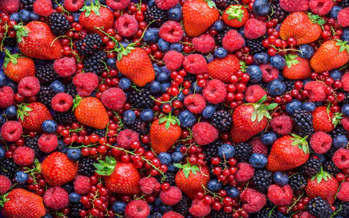 Trái cây theo mùa: Quả mọng, ổi, cam, dứa… là những nguồn cung cấp vitamin, chất chống ô xy hóa và giúp tăng cường miễn dịch./.