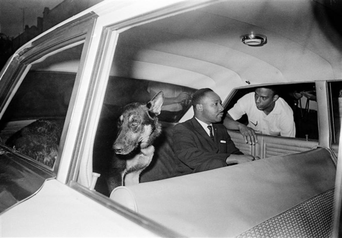 Ông King ngồi sau xe cảnh sát khi bị đưa trở lại nhà tù ở Saint Augustine, bang Florida, sau khi làm chứng trước bồi thẩm đoàn về tình trạng bất ổn chủng tộc ở thành phố ngày 12/6/1964. Ảnh: AP
