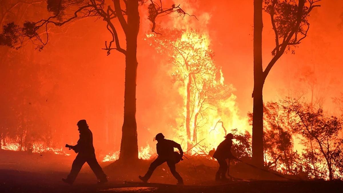 Thiệt hại từ biến đổi khí hậu bao gồm hạn hán, cháy rừng, nước biển dâng và các dạng thời thiết cực đoan có thể gây thiệt hại kinh tế 100 tỷ AUD mỗi năm cho Australia. Ảnh AAP.